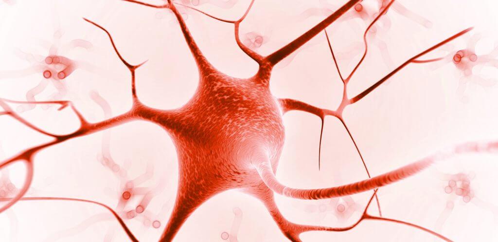 Altre malattie sistema nervoso